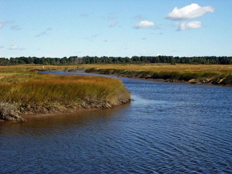 https://commons.wikimedia.org/wiki/File:Scarborough_marsh_saltwater.jpg